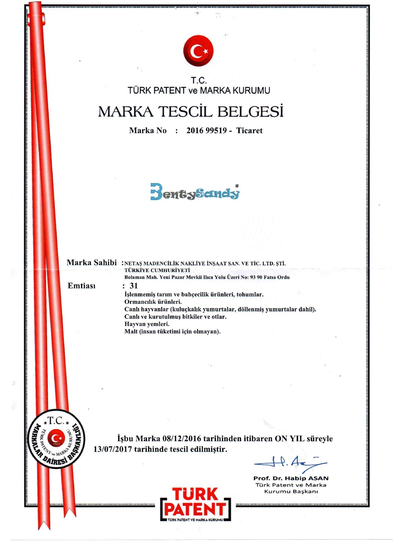 bentysandy patent